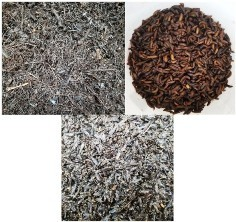 images of food scrap-bulking agent mixture, BSF prepupae harvested from mixture and adult BSF