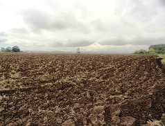 image of plowed field showing furrows and overcast sky